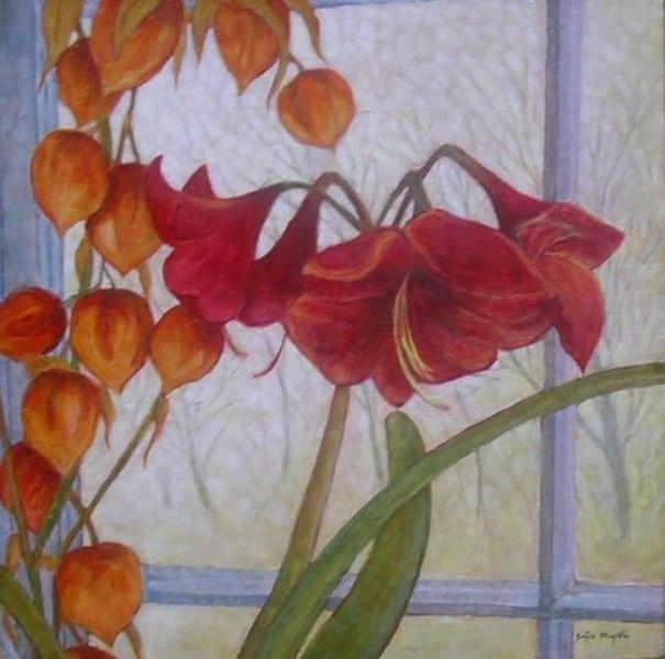 Amaryllis Windowscape